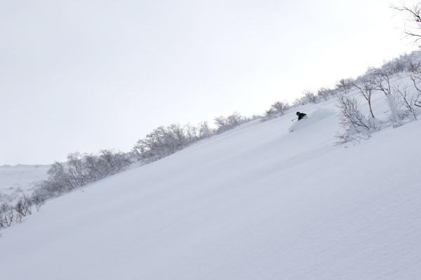 niseko_bc_guide_1230_3