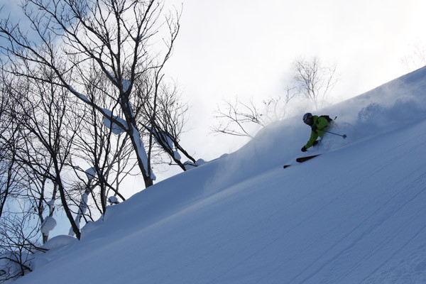 niseko_backcountry_tour_201601 (13)