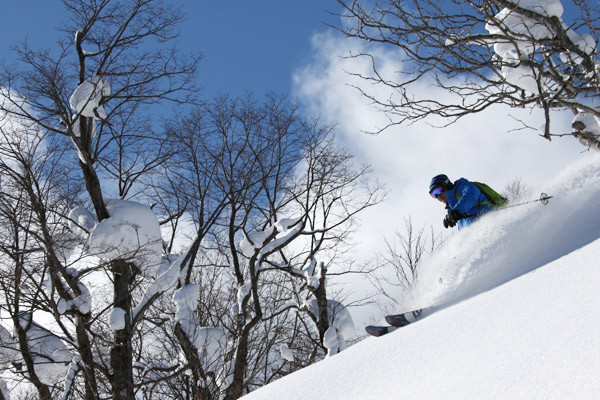 niseko_backcountry_tour_201601 (18)