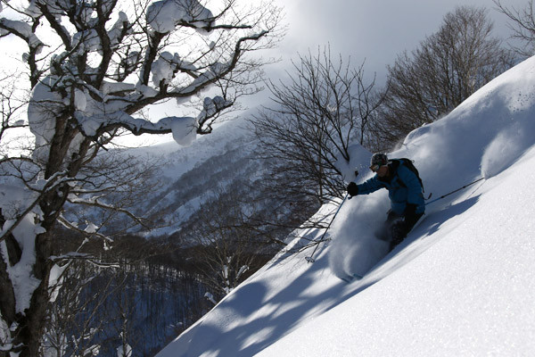 niseko_backcountry_tour_201601 (19)
