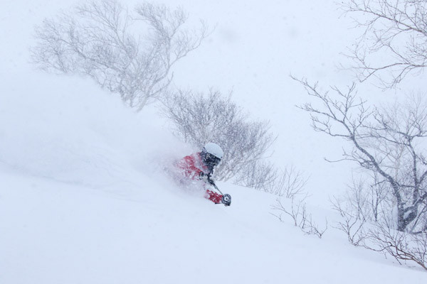 niseko_backcountry_tour_201601 (5)