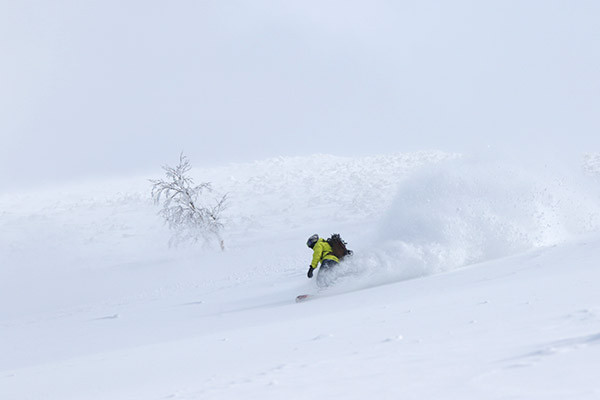 niseko_backcountry_powder_010