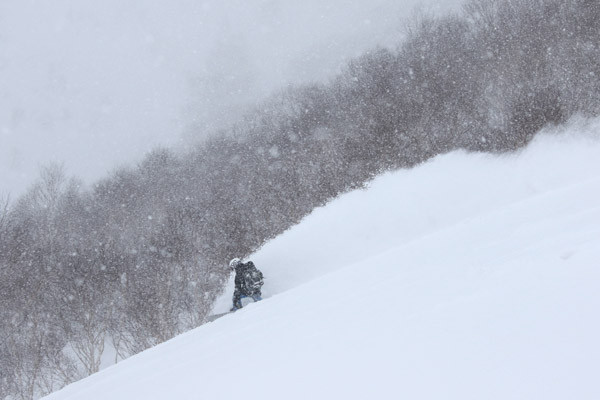 niseko_backcountry_powder_013