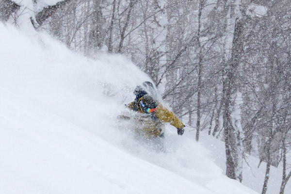 niseko_backcountry_powder_027