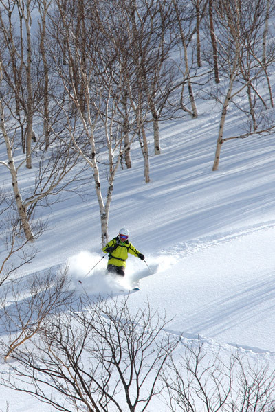 niseko_backcountry_powder_031