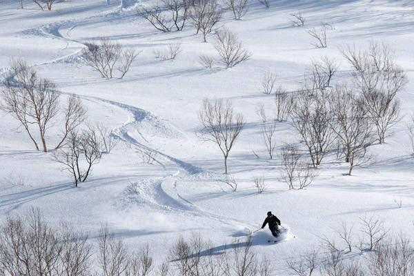 niseko_backcountry_powder_045