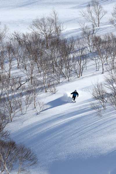 niseko_backcountry_powder_046