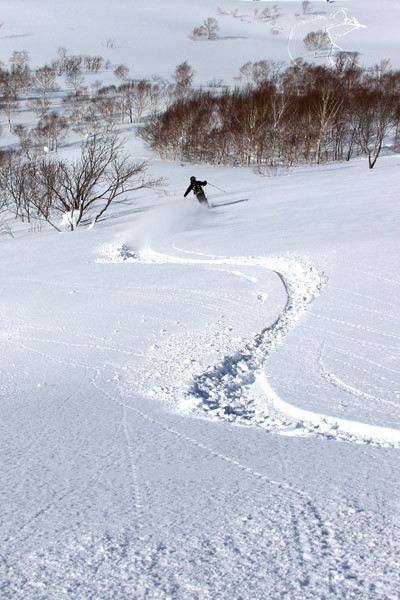 niseko_backcountry_powder_047