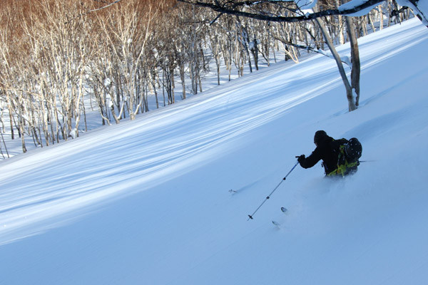 niseko_backcountry_powder_049