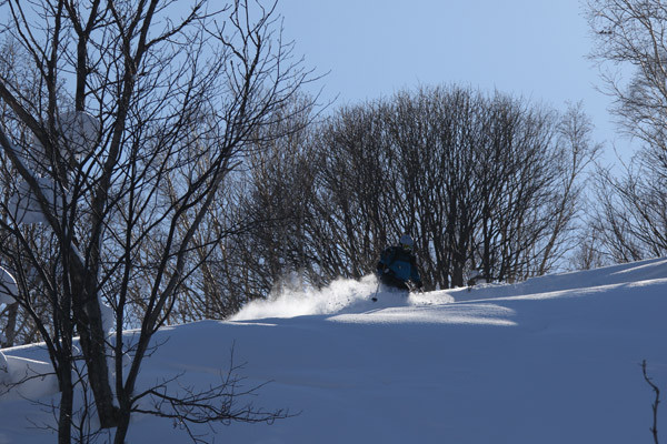 niseko_backcountry_powder_050