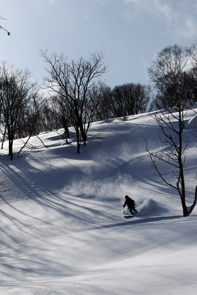 niseko_backcountry_powder_052