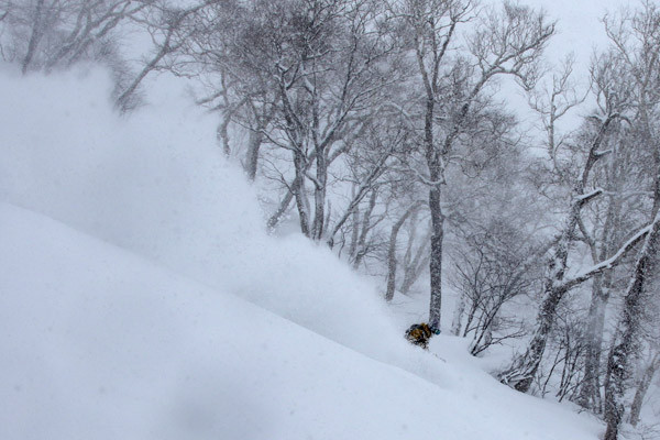 niseko_backcountry_powder_064