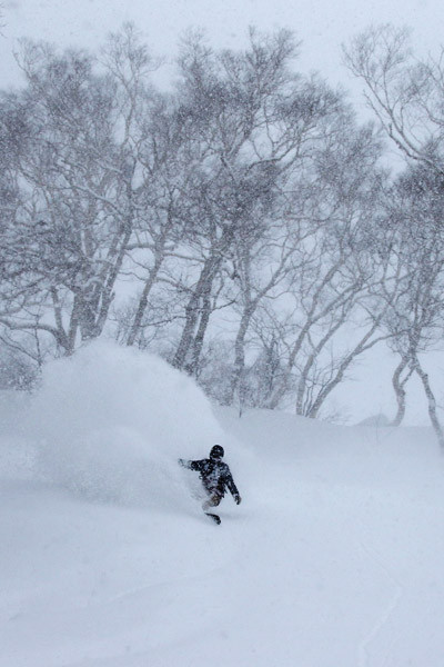 niseko_backcountry_powder_065