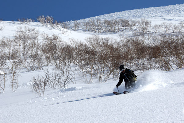 niseko_backcoutry_powder_066