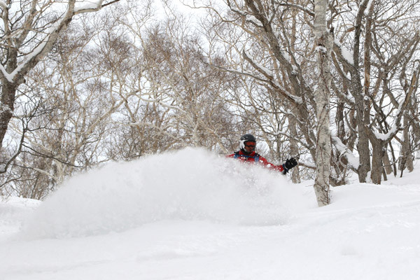 niseko_powder_BC_guide (11)