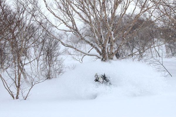 niseko_powder_BC_guide (15)