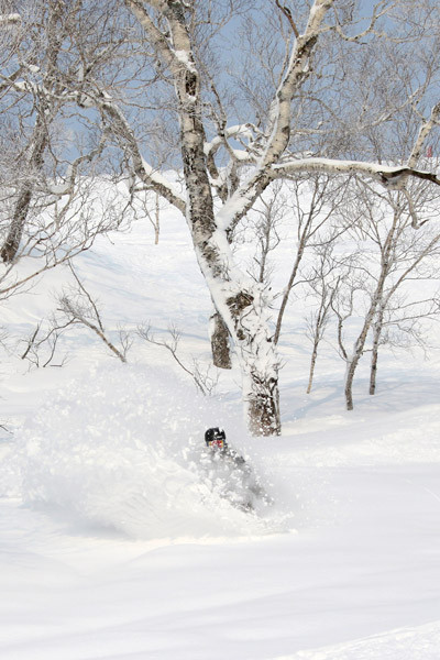 niseko_powder_BC_guide (8)