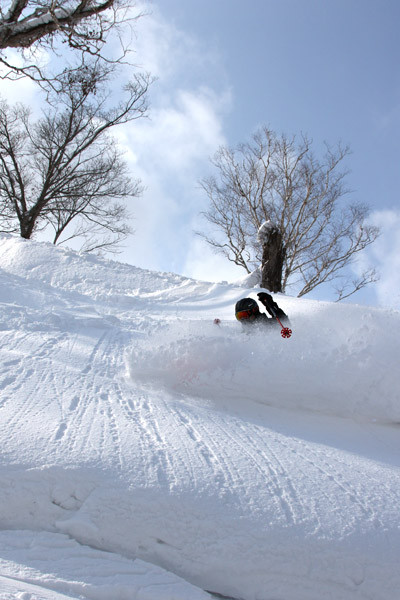 powderguide_niseko_01