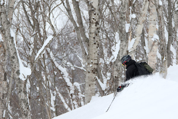 powderguide_niseko_02