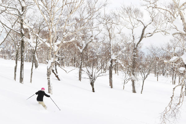 Niseko_Backcountry_powder_guide (16)