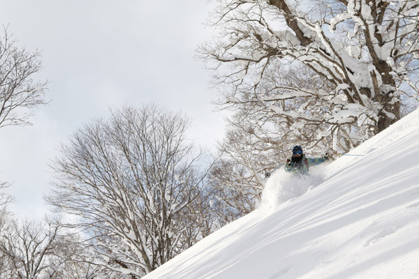 Niseko_Backcountry_powder_guide (22)