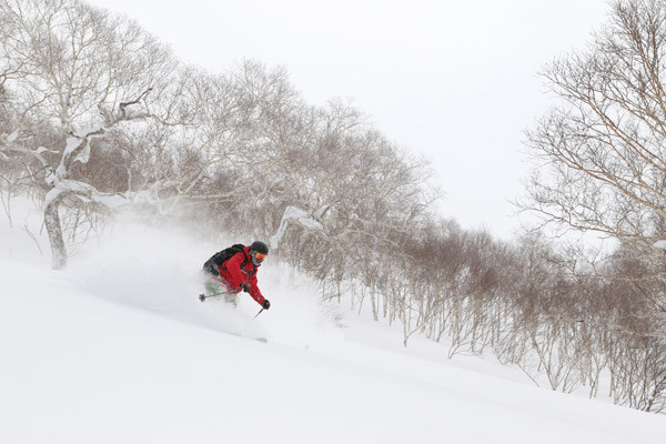 Niseko_Backcountry_powder_guide (36)
