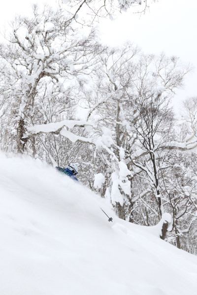 Niseko_Backcountry_powder_guide (8)