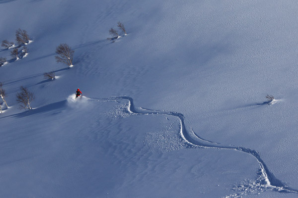 Niseko_powder_backcountry_guide(30)