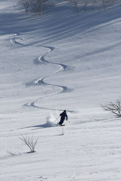 Niseko_powder_backcountry_guide(39)